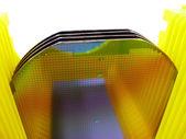Sarı bir taşıyıcı silikon gofret — Stok fotoğraf