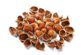 Skořápky ořechů a ořechy — Stock fotografie