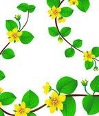 Jarní květy — Stock vektor