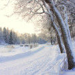 Snow-covered bench, - Stock Photo