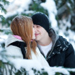 Guy and the girl enjoy winter walk — Stock Photo #4508178