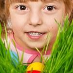 Easter eggs hunt — Stock Photo #4954254