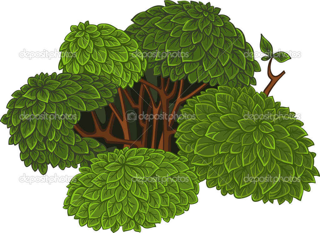 Green detailed bush — Stock Vector #4523834