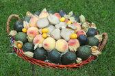 Mushrooms and fruit — Stock Photo
