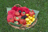 Früchte-hintergrund — Stockfoto