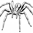 Royalty-Free Stock Vektorov obrzek: Spider