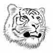 Vector face of a tiger - Stock Vector