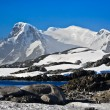 Beautiful snow-capped mountains — Stok fotoğraf