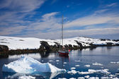 Yacht in Antarctica — Stock Photo
