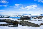 Winter landscape in Antarctica — Stock Photo