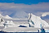 Antarctique iceberg — Photo