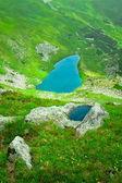 Alpine meer — Stockfoto