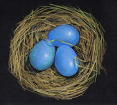 Color Pencil Drawing of Bird's Nest With Eggs — Stock Photo