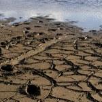 Mud at the lake — Stock Photo #4871291