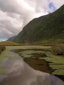 Azores lake — Stock Photo