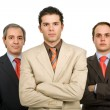 Business team — Stock Photo #4886676