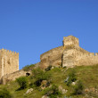 Castle - Foto Stock