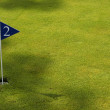 Stock Photo: Golf green