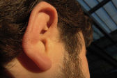 Ear man — Stock Photo