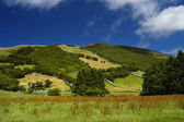 Azores Hill — Stock Photo