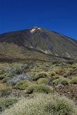 Teide mountain — Stock Photo