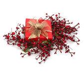Luxusní dárek — Stock fotografie