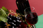 Red wine and grape close-up — Stock Photo
