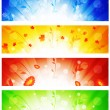 Banner collection — Stock Vector #3994842