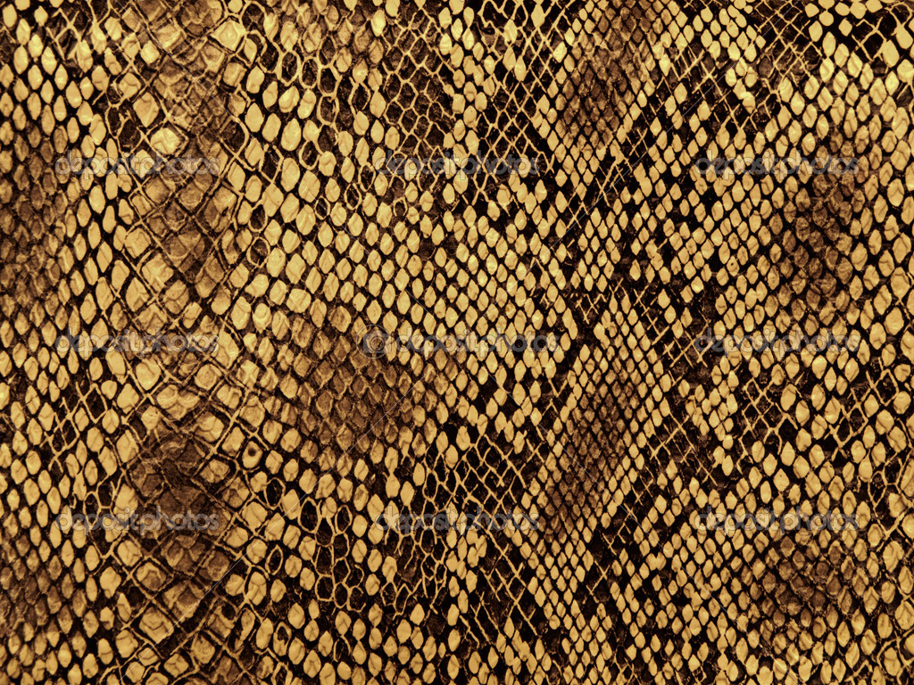Snake skin with the pattern lozenge style — Foto Stock #4628498