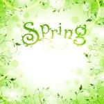 våren ram — Stockvektor