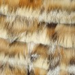 Fox and mink fur — Stock Photo