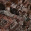 Mink fur — Stock Photo