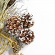 Christmas decoration — Stock Photo #4417467