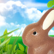 Stock Photo: Easter bunnie