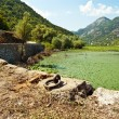 Skadar lake, Montenegro — Stock Photo