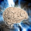 3d Brain — Stock Photo