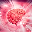 3d Brain — Stock Photo #4537645