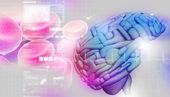 3d beyin — Stok fotoğraf