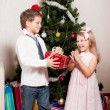 Girl and boy near a fir-tree — Stock Photo #4389514