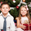 Girl and boy near a fir-tree - Stock Photo