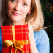 Royalty-Free Stock Photo: Beautiful  woman  with a Christmas gift