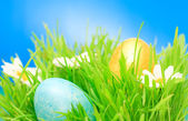 Easter eggs — Foto de Stock
