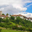 Regensberg castle — Stock Photo