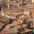 Stock Photo: Siena