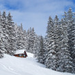 Winter holiday house — Stock Photo #4313797