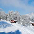Winter in the alps - Lizenzfreies Foto