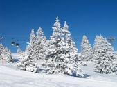 Zima v alpách — Stock fotografie
