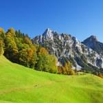 automne dans les Alpes suisses — Photo