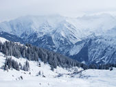 Heavy snowstorm in the alps — Stock Photo