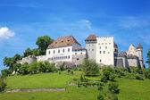 Lenzburg kalesi — Stok fotoğraf